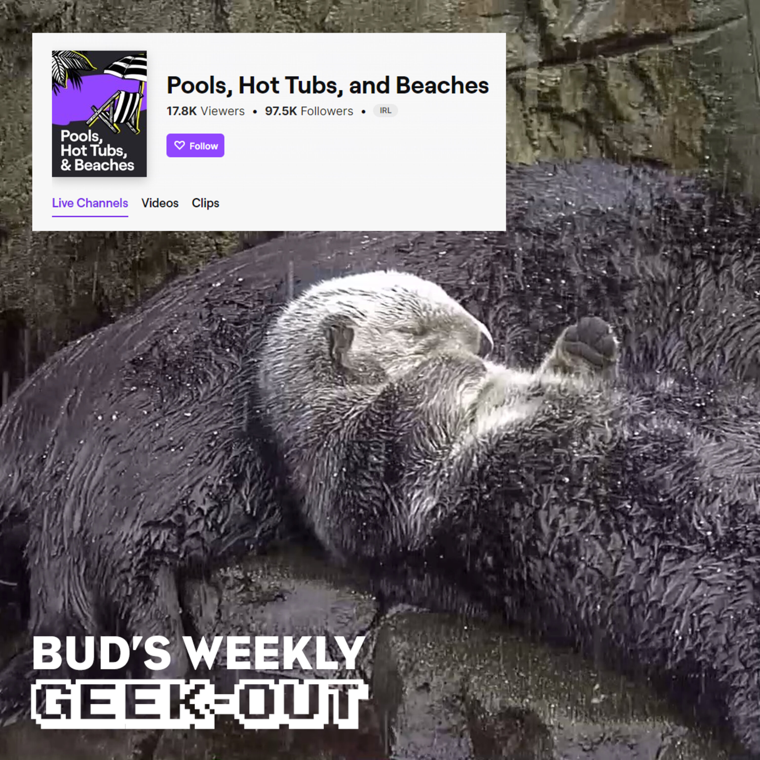 Bud's Weekly Geek-out! 20210602 - Twitch and hot tub meta