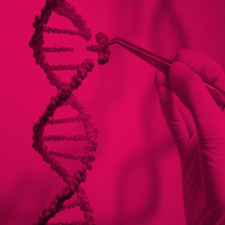 באמצעות CRISPR: חולים רופאו ממחלות תורשתיות