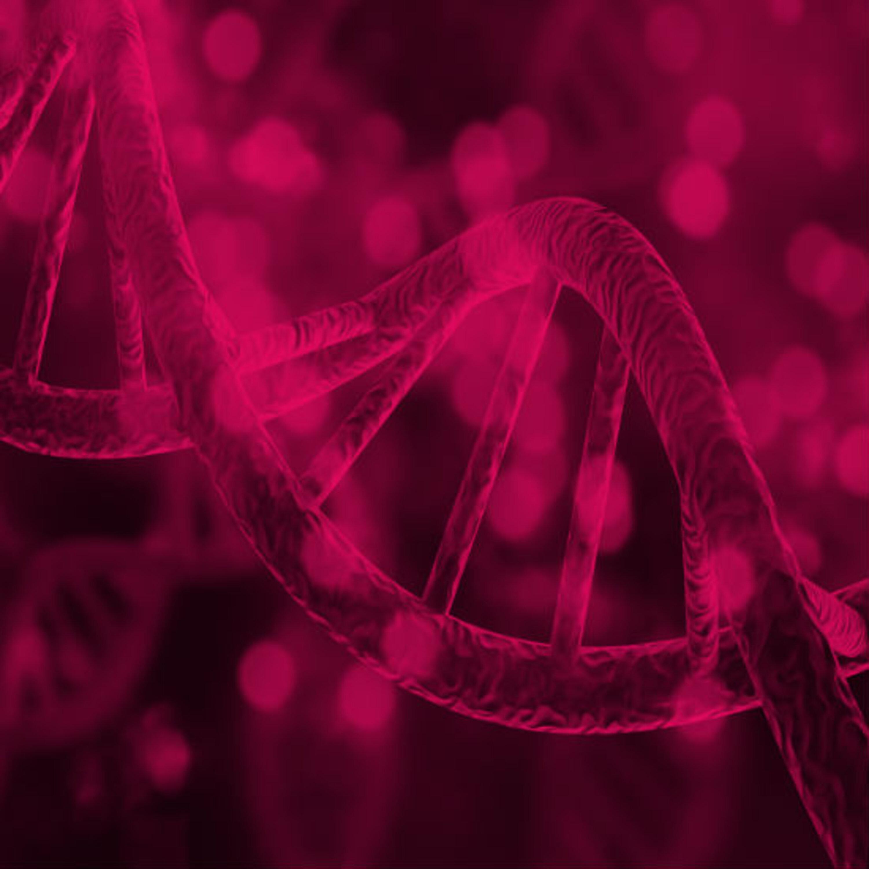 המוטציה הגנטית שעשויה להוביל להתפתחות אוטיזם