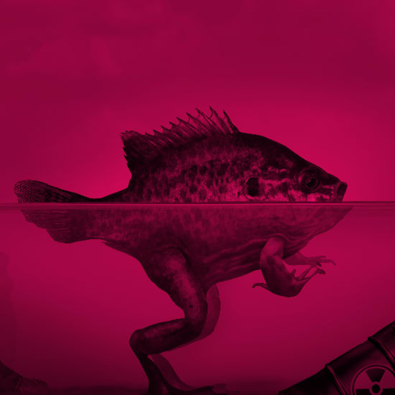 מה סייע לדגים לצאת מהים ולחיות ביבשה?