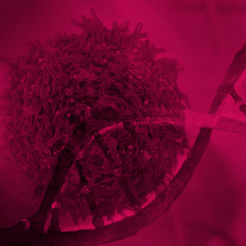 המדע נגד הסרטן