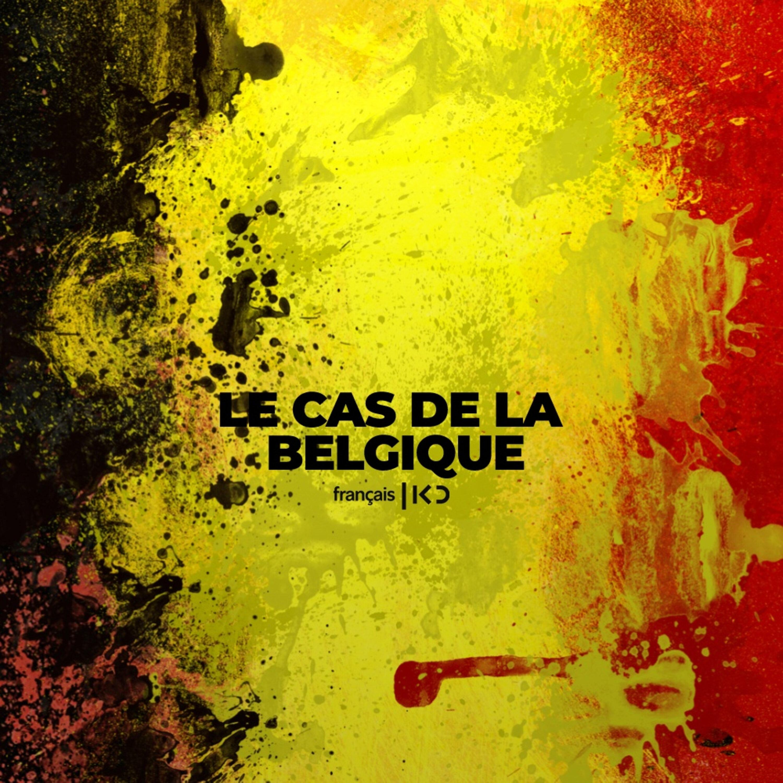 Le cas de la belgique