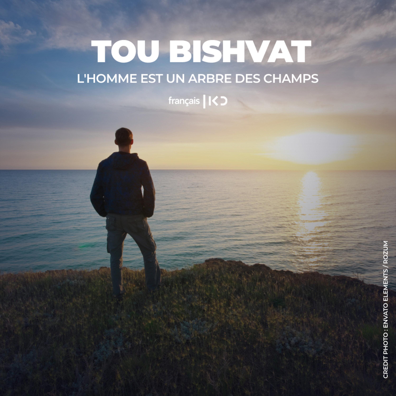 Tou Bishvat : L'homme est un arbre des champs