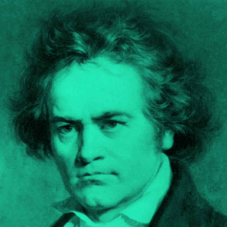 לודוויג ואן בטהובן | מחשבות נוספות