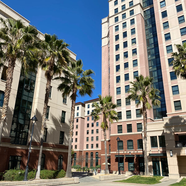"Spartan Spotlight: SJSU Ranked ""Most Transformative University in the Nation"""