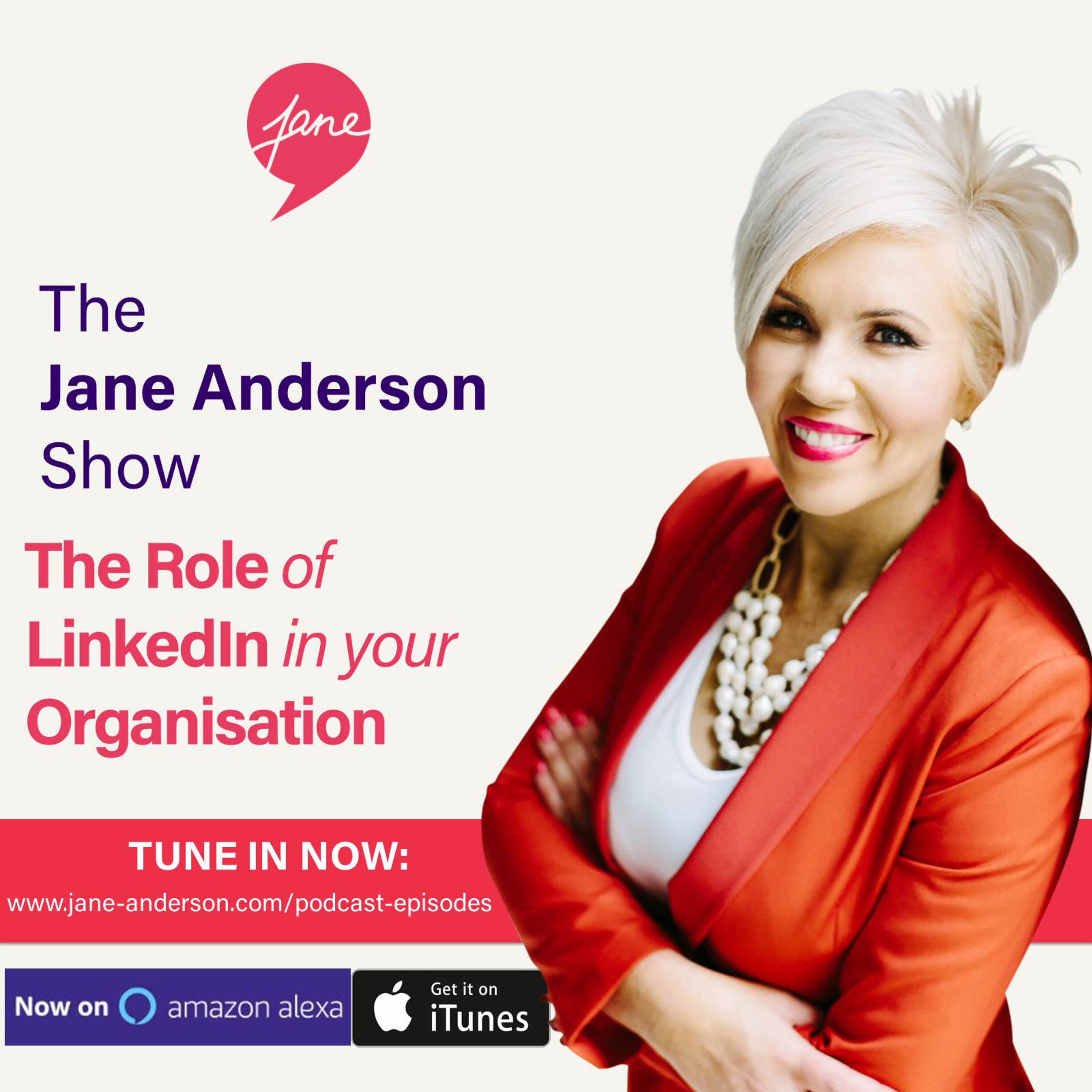 Episode 26 - The Role of LinkedIn for Different Levels in your Organisation