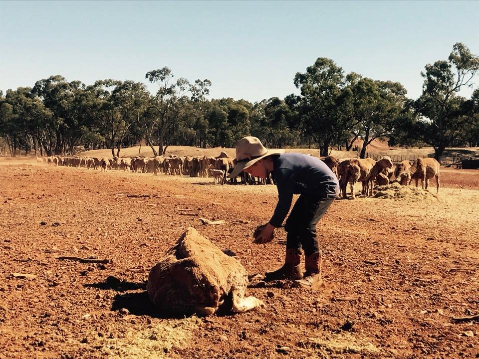 Drought Affected Farmer Sheena Shares About The Mental Health Affects Of The Drought - SPECIAL EDITION PODCAST