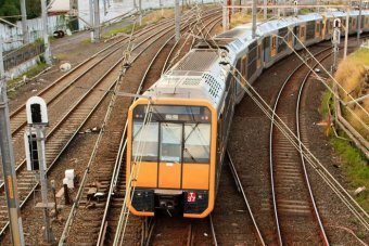 The Coast Will Get A $100,000 Injection Towards Public Transport!