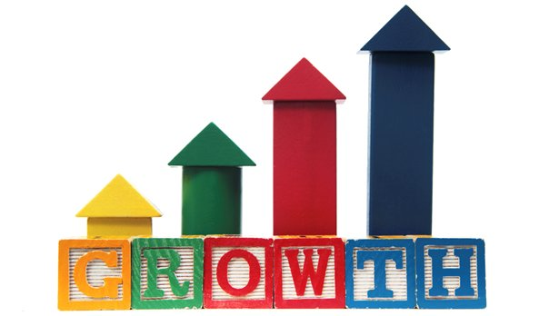 Why businesses stop growing (a lesson for entrepreneurs)