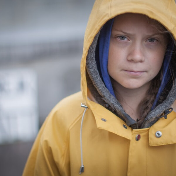 The Greta Thunberg effect