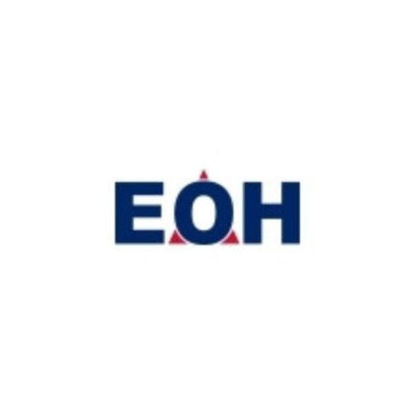 Investigators find serious corruption at EOH