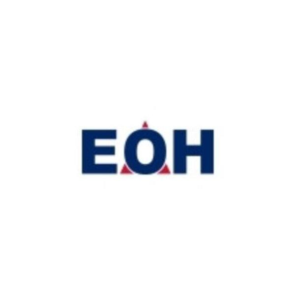 Investigators find serious corruption at EOH