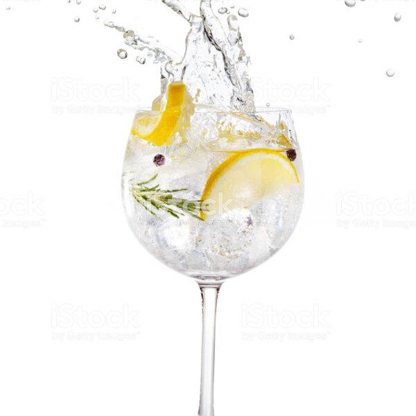 Original Gin & Tonic festival comes to CT