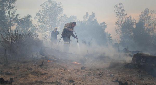 George & Mossel Bay fire