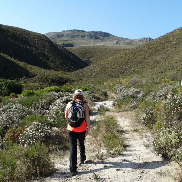 Hiking with Tim Lundy: a beginner's guide to hiking in CT