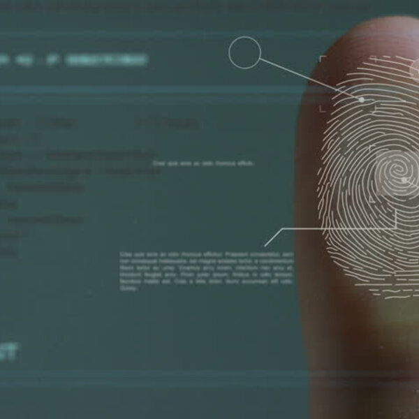 Biometrics & Air travel