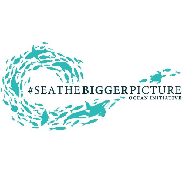 Sea the bigger picture - Coastal Environmental Education and ocean pollution awareness