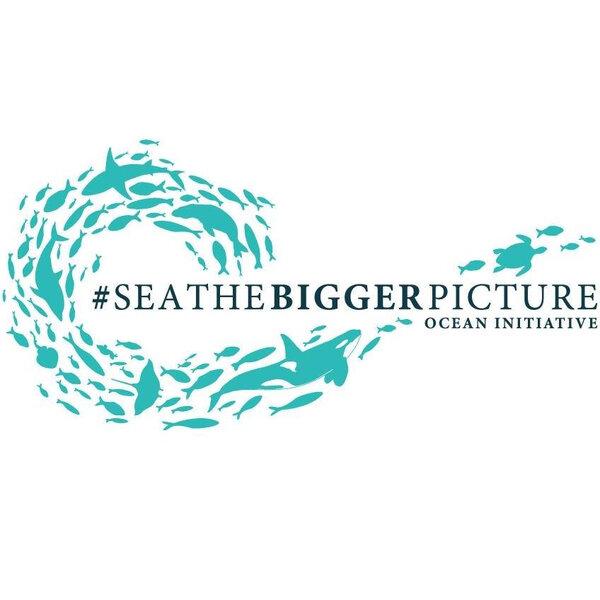 Sea the bigger picture - Coastal Environmental Education and ocean pollution awareness