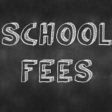 Paying school fees at a public government school is illegal