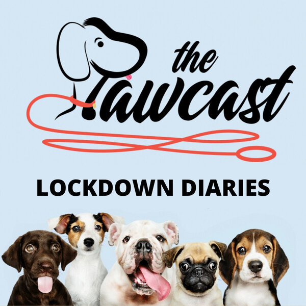 Lockdown Diary Day#8 - Thanks!