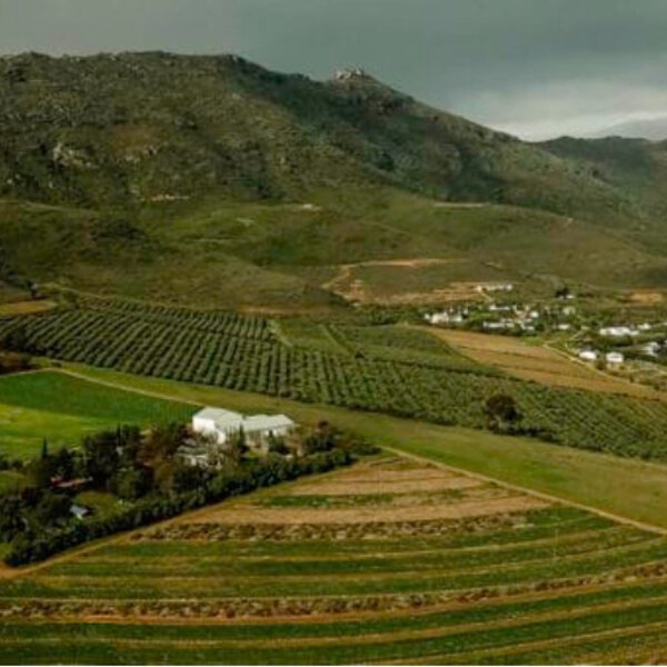 "Travel Feature: Iga explores ""The Swartland"""
