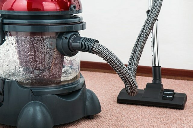 Darren makes an honest vacuum of Henry the hoover!