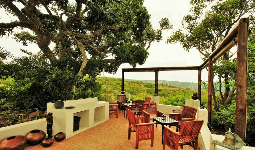 Travel Feature: Graceland Eco Retreat in Magoebaskloof, Limpopo