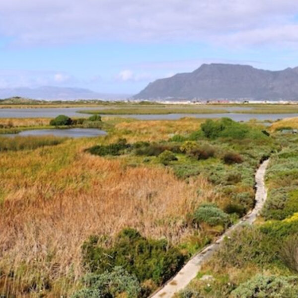 New policy to restrict consumptive use of species of wild flora