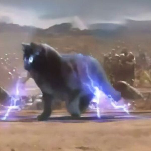 Barbs' Wire - A guy improves Hollywood movies by editing his cat into them and the result is hilarious