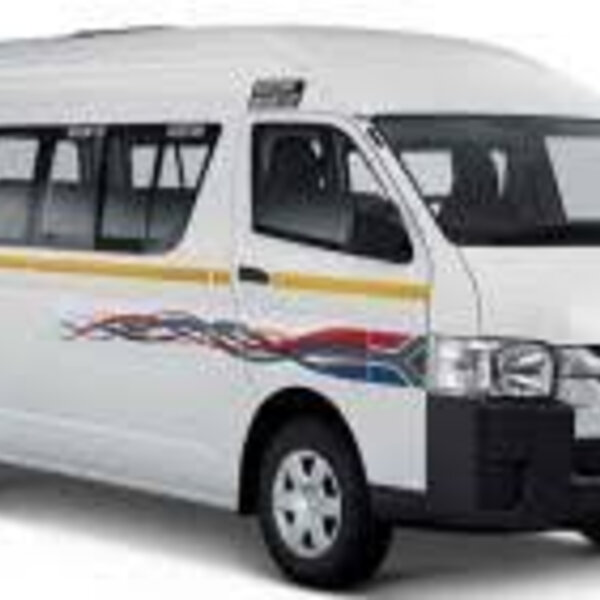 How do we formalise the minibus taxi industry to qualify for government subsidy