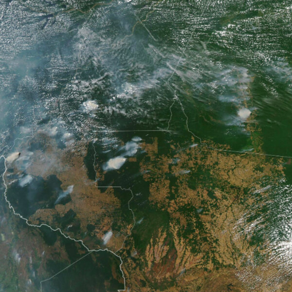 Amazon rainforest 'lungs of the world' burning at record rate