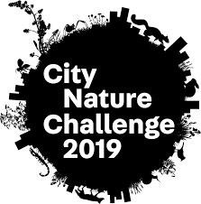 Global city nature challenge