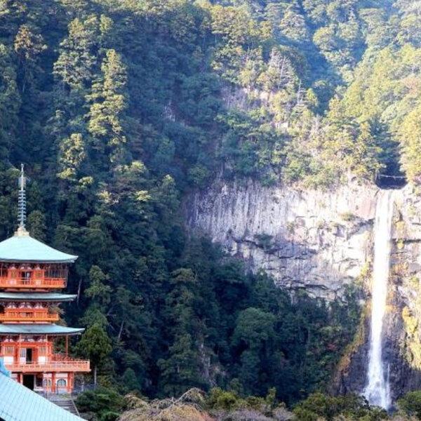Wanderlust Wednesday: Japan