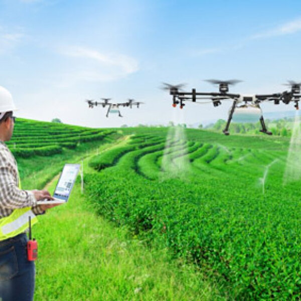 Is technology revolutionizing SA agri at the expense of people? Guest: Paul Makube