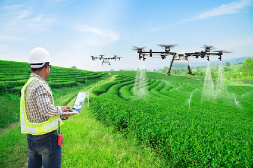 Is technology revolutionizing SA agri at the expense of people?
