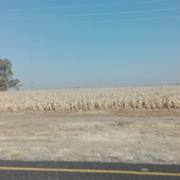 ANC set to hand land expropriation power to land minister