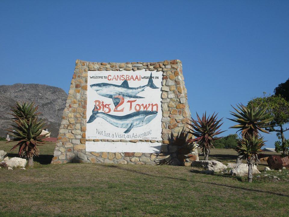 The Carbon Footprint of SA Tourism