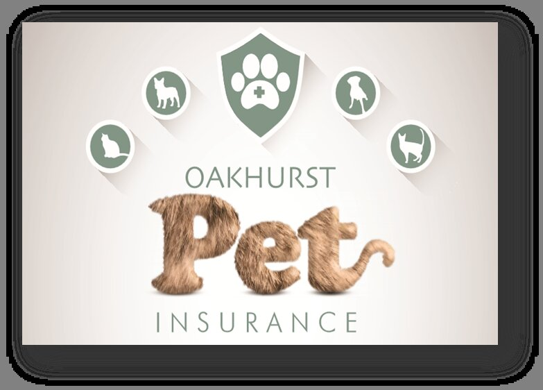 Taking the Bite Out of Pet Care Costs - medical aid for pets