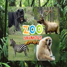 Maltreatment of animals at zoos