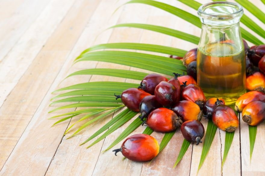 Nigeria is, as you know, all about oil. It's also about 'palm oil'