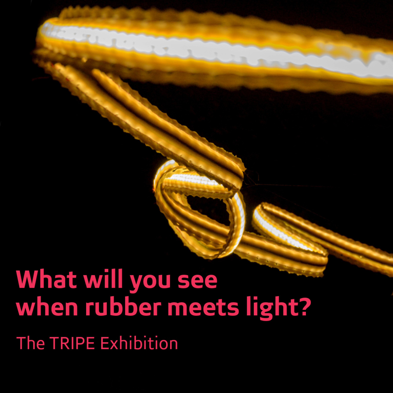"""TRIPE"" according to artist Elrie Joubert"