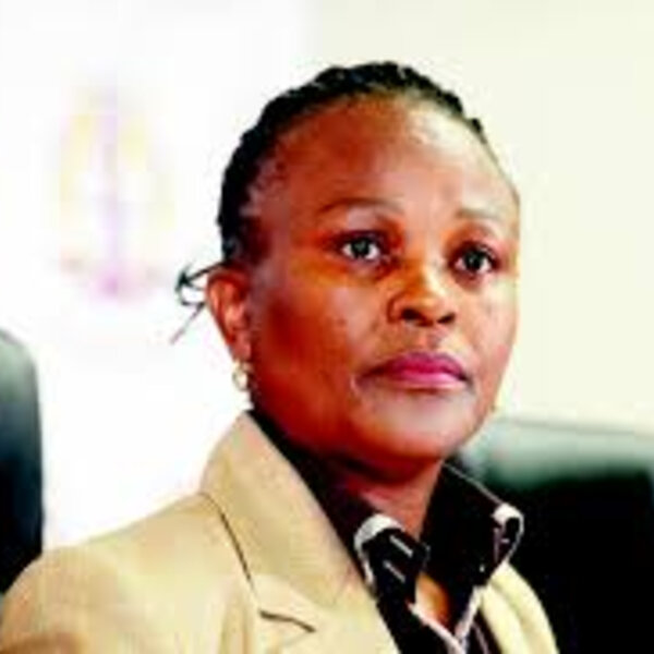 Public Protector taken aback by DA claims on Ramaphosa investigation