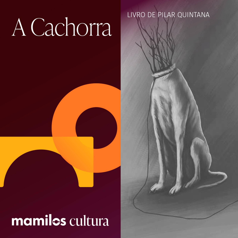 """Mamilos Cultura 43: Livro """"A Cachorra"""" - Maternidade e Violência"""