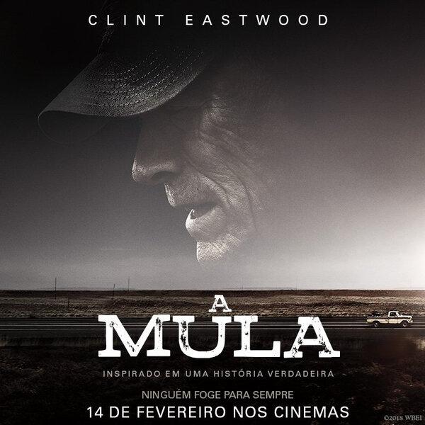 Filme A Mula