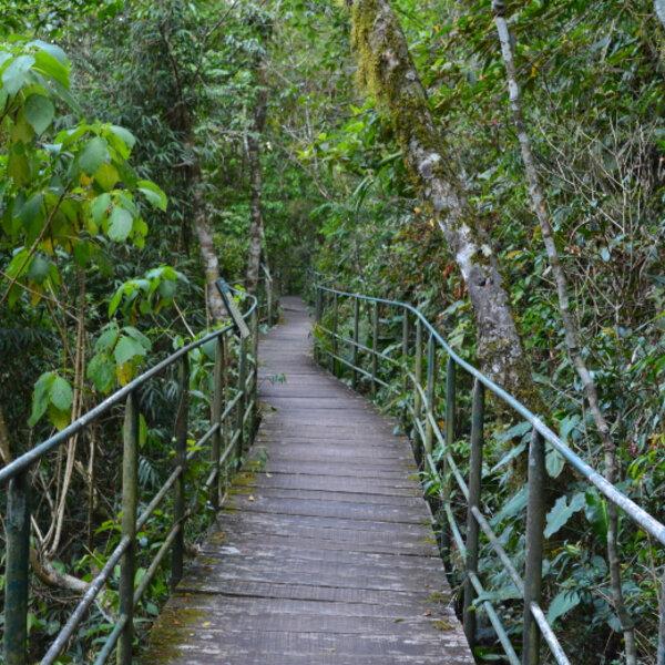 Conheça o Parque Nacional de Teresópolis