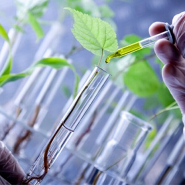 #78 - Biotecnologia