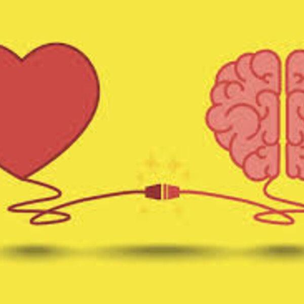 Ligação entre coração e cérebro