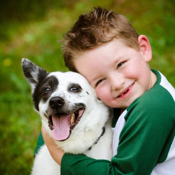 Você tem ideia de como é importante brincar com os animais de estimação?