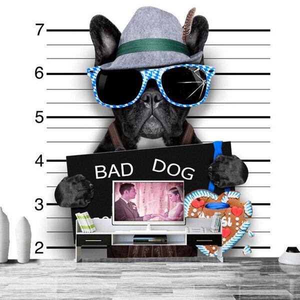 Seu animal precisa de um adestrador ou de um veterinário especialista em comportamento?