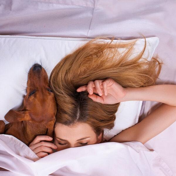 Você dorme com seu cachorro ou gato na cama?